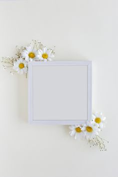 Top view of blank photo frame decorated with white daisy flowers over white backdrop Free Photo Photo Frame Wallpaper, Flower Background Wallpaper, Framed Wallpaper, Flower Backgrounds, Frame Background, Old Dress, Polaroid Picture Frame, Instagram Frame Template, Photo Frame Design