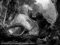 King Kong vs T Rex.                            King Kong 1933