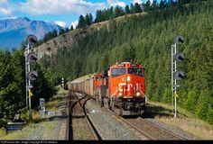 RailPictures.Net Photo: CN 2804 Canadian National Railway GE ES44AC at Jasper, Alberta, Canada by Tim Stevens