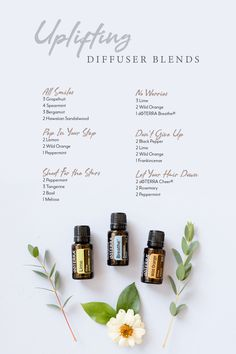Welcome to my doTERRA Diffuser Blends index. There is basically an unlimited number of ways to use doTERRA essential oils. Doterra Diffuser, Essential Oil Diffuser Blends, Doterra Essential Oils, Doterra Blends, Best Essential Oils, Essential Oil Uses, Cedarwood Oil, Doterra Cedarwood, Cedarwood Essential Oil