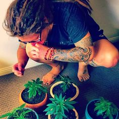 I show these plants more love ❤️ then I show my own bitch🔥🍁😂🤣 #weed #weedstagram #kush #high #highlife #cannabis #rapper #dope #pot #420 #710 #homegrown #inked #ink #tattoo #tattoos #dreads #smoke #stoner #stoned #marijuana #maryjane #love #nature #boss #thc #music #comedy #ganja #hightimes    #Regram via @spacedminga)