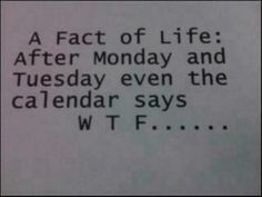 A fact of life:  After Monday and Tuesday even the calendar says W T F...