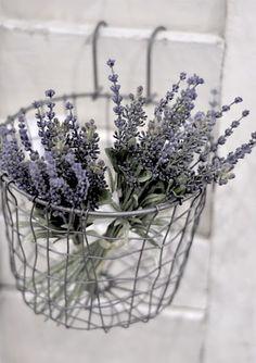 #lavender #basket #flowers