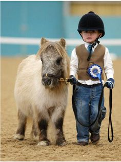 Cute Baby Miniature Horses | tumblr_lydellsly11qjwm7zo1_500.png