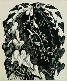 John Nash (British, 1893-1977). Black Byrony. 1929. (wood engraving)