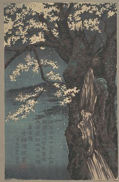 Kobayashi Kiyochika | Cherry Tree | Japan | Meiji period (1868–1912) | The Met