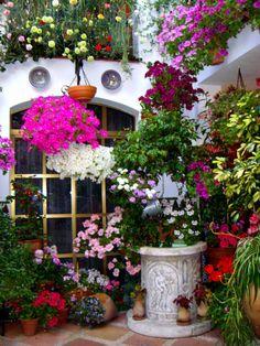 Patios festival 2012 - Wishing well, Córdoba, Spain - by Eva Bravo - My Garden Sun Spanish Garden, Hanging Flower Pots, Love Garden, Container Flowers, Container Gardening, Herb Gardening, Beautiful Gardens, Garden Plants, Garden Landscaping
