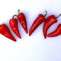 Red Jalapeno Chilies