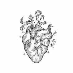 Estúdio: @eightlines_tattoostudio . Publicado por @tattooinke @ttblackink _________________________________ #art #artwork #sketching #painting#desenho#sketch_daily#tattooartist#tattooflash#instaart#illustration#tatts#linework#ink#tattooideia#blackandgrey#tattooartist#tatuaje#tattoo#ink#art#h2ocean#art#ink#tatt#tats#flash#flashtattoo#drawings#black#pencil#blacktattoo#ttblackink#sketchbook#tattoo#hand#goodnight