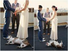 Unique, Nautical Chic Navy Yard Wedding In Brooklyn - Bridal Musings Wedding Blog