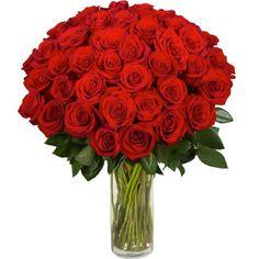 fotos de rosas rojas preciosas para regalar