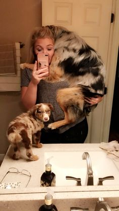 The traits we all enjoy about the Australian Shepherd Cute Funny Animals, Cute Baby Animals, Animals And Pets, Wild Animals, Farm Animals, Cute Dogs And Puppies, I Love Dogs, Doggies, Funny Puppies