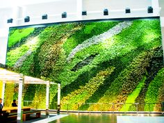 Incríveis jardins verticais em Nova Iorque