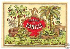 Creme de Vanille liqueur label