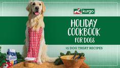Frozen Dog Treats, Diy Dog Treats, Homemade Dog Treats, Dog Treat Recipes, Holiday Treats, Holiday Recipes, Dog Friendly Holidays, Dog Winter Coat, Dog Friends