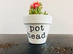 New succulent garden planters cactus Ideas Indoor Succulent Planter, Succulent Pots, Garden Planters, Indoor Cactus, Painted Flower Pots, Painted Pots, Hand Painted, Small Succulents, Succulents Garden