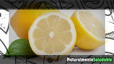 REMEDIOS CASEROS PARA LA ACIDEZ ESTOMACAL EN EL EMBARAZO  3 REMEDIOS CASEROS PARA LA ACIDEZ ESTOMACAL EN EL EMBARAZO SUSCRIBETE AQUI https://www.youtube.com/channel/UCA9QeZOFSMbnMFOUybmfBfw?sub_confirmation=1 Remedios caseros para la acidez en el embarazo si sufres de acidez y estas periodo de embarazo ten en cuenta que no puedes tomar cualquier medicamento e incluso remedios naturales ya que pueden causar problemas en tu embarazo. Para esto quiero compartirte un remedio casero para la…