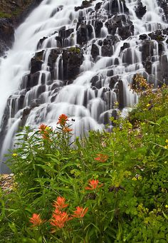 Twin Falls at Yankee Boy Basin - San Juan Mountains, Colorado