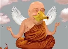 appeau zen