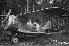 Haulla Ilmavoimat SA-kuva.fi tarjoaa ensimmäisenä Polikarpov I-153 -koneen suomalaisissa tunnuksissa. Palvelussa se tosin on nimetty Curtissiksi. Kaikkiaan haku tuottaa 184 osumaa. Kuva SA-kuva.fi