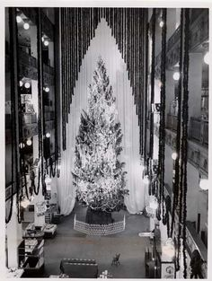 Lindner Davis Christmas Trees on Playhouse Square in Cleveland