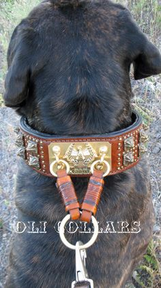 Anticuus Collar. Crafted from vintage dog collars. #DYKDogs