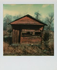 [Abandoned House]  Walker Evans (American, St. Louis, Missouri 1903–1975 New Haven, Connecticut)  Download image