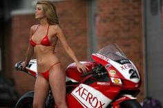 ducati 999 sbk pitbabes sexy hot bikini 1 - Ducati 999 - ID: 672742