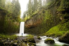 http://500px.com/photo/187809551 Venture Local by ChrisBurkard -The west coast of the US is filled with hidden and not so hidden gems. A lot of people think to get a great shot they need to venture out to some epic location. Yes that is fun and you do get great photographs  stories and experiences; but really some of the most beautiful places you can shoot are sometimes in your backyard. @olloclip. Tags: 2014OREGONCHRIS BURKARDTRAVEL OREGON