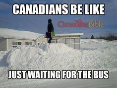 Trendy memes in real life meanwhile in 47 Ideas Canada Jokes, Canada Funny, O Canada, Canadian Memes, Canadian Things, Canadian Humour, Canadian Stereotypes, Meanwhile In Canada, Memes In Real Life