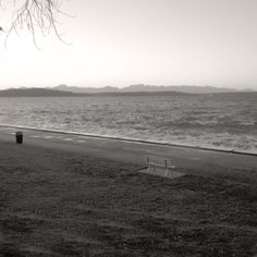 Seatting for the Alki Storm Available