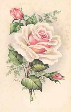 Images Vintage, Vintage Pictures, Vintage Cards, Vintage Postcards, Floral Vintage, Vintage Flowers, Vintage Prints, Shabby Chic Flowers, Images Lindas