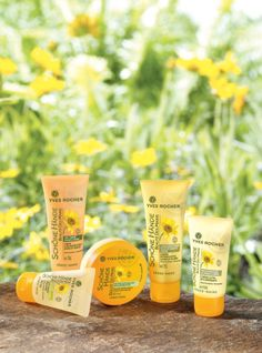 The new organic Arnica Hand Beauty Care line! Perfect to take care of your hands when the temperature falls! Yves Rocher, Beauty Care, Beauty Hacks, Beauty Tips, Organic Skin Care, Natural Skin Care, Arnica, Bio, Makeup Cosmetics