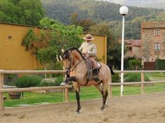 Horse Can Vila is an equestrian center created by the year 2000. Located in the Montseny Natural Park (less than 10 minutes from Villa Maria by car) offers visitors the opportunity to enjoy the world of horses in a natural privileged environment.