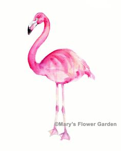 Pink Flamingo Watercolor Print 5 x 7 by Marysflowergarden on Etsy, $8.00