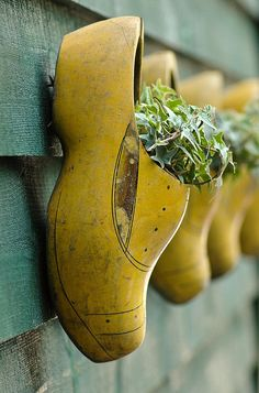 Decorative wooden shoes used as planters