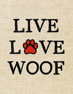 Live Live Woof Exclusive Tshirt For Pet Lovers Just Release Not Store - Funny Dog Quotes - The post Live Live Woof Exclusive Tshirt For Pet Lovers Just Release Not Store appeared first on Gag Dad. Love My Dog, Puppy Love, Golden Retriever, Labrador Retriever, Dog Rules, Tier Fotos, Border Terrier, Animal Quotes, Dogs Of The World