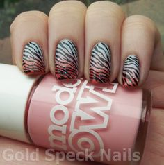 Zebra print on gradient nails