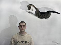Cat Attack!   :-))