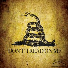 With the snake wrapped around a gun American Pride, American History, Pyrography Patterns, Wood Burning Crafts, Dont Tread On Me, God Bless America, I Tattoo, Tatting, Liberty