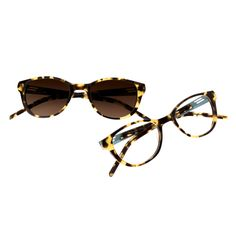 5cd095649 Montura marca Orgreen, modelo Chester con lentes Transitions Signature