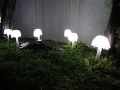 Unique lamp with white mushrooms that look very organic. It is primarily decorative and is intended to visually beautify your desk or room. It is not intended to play a role of primary light in the room. Leaves the impression that you simply feel like you have a little piece of nature in your home. It is characterized by a specific design and very low power consumption around 4W. The lamp plugs into an ordinary socket and has a switch on the cable.