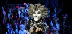 awesome The Best Cat Owner's Survival Guide Online Theatre Geek, Musical Theatre, Bunny Halloween Costume, Halloween Face Makeup, Broadway Plays, Cats Musical, Lisa S, Now And Forever, Cat Love