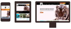 A Comparison of Methods for Building Mobile-Optimized Websites
