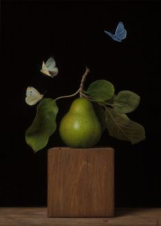 The Nature of Things, Sydney Bella Sparrow, oil on canvas on panel Still Life Photography, Creative Photography, Sparrow Art, Dutch Still Life, Still Life Fruit, Great Works Of Art, Spring Landscape, Butterfly Shape, High Art
