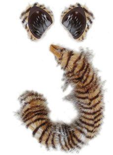 cat kit lynx