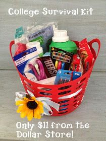 Proverbs 31 Mom: College Survival Kit