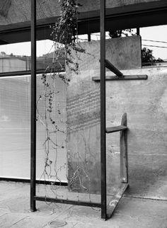 Biopolis, instalación de Sebastián Mejía en Galería Tajamar