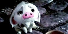 Pua from Moana! Moana Disney, Disney Pixar, Disney Animation, Disney Magic, Disney Amor, Disney Sidekicks, Arte Disney, Disney And Dreamworks, Disney Characters