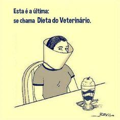 Dieta do veterinário